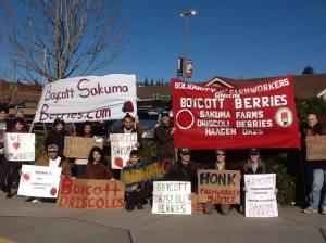 Boycott Sakuma! Bocott Driscolls! IWW picket in Bellingham, February 2015.