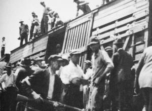deportation-boxcar